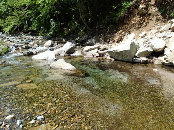 鹿留川の清冽な流れ。水量はやや少なめか