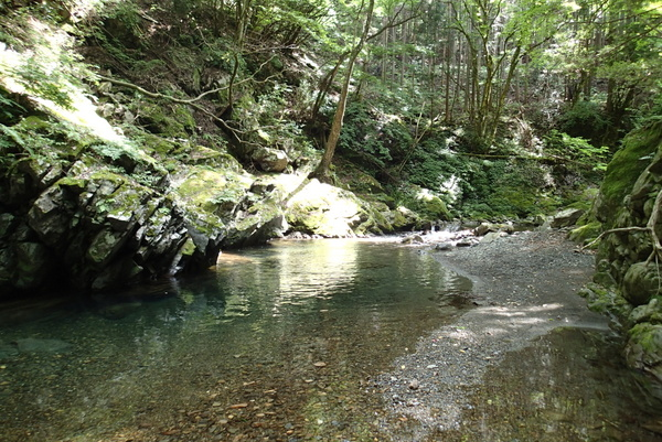 【釣行データ】2016年06月11日(土):鶴川